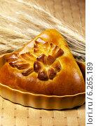Купить «Свежая булка и колосья», фото № 6265189, снято 30 сентября 2011 г. (c) ElenArt / Фотобанк Лори