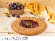 Сливовый пирог. Стоковое фото, фотограф Ольга Лепёшкина / Фотобанк Лори