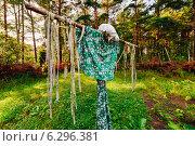 Пугало в этнологическом музее Эстонии (2014 год). Редакционное фото, фотограф Aleksandr Stzhalkovski / Фотобанк Лори