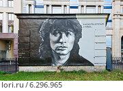 Купить «Граффити, посвященное годовщине гибели Виктора Цоя, Санкт-Петербург», фото № 6296965, снято 15 августа 2014 г. (c) Алина Сбитнева / Фотобанк Лори