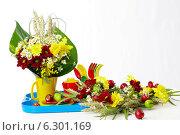Купить «Цветочная композиция», фото № 6301169, снято 1 февраля 2011 г. (c) Зудин Виталий Владимирович / Фотобанк Лори