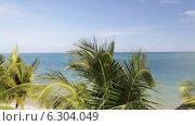 Купить «Tropical beach with palm trees», видеоролик № 6304049, снято 30 июля 2014 г. (c) Syda Productions / Фотобанк Лори