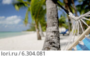 Купить «Close up of hammock swinging on tropical beach», видеоролик № 6304081, снято 30 июля 2014 г. (c) Syda Productions / Фотобанк Лори
