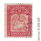 Купить «Почтовая марка Ньюфаундленда с изображение карты острова, 1908 год», иллюстрация № 6309305 (c) Евгений Ткачёв / Фотобанк Лори