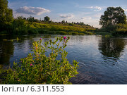 Река Холохольня, деревня Княгинино. Стоковое фото, фотограф Александр Маркин / Фотобанк Лори