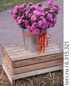 Букет цветов в ведре. Стоковое фото, фотограф Степанова М Е / Фотобанк Лори
