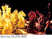 Купить «Противостояние. Борьба света и тьмы. Шахматы. Янтарь», фото № 6318409, снято 24 августа 2014 г. (c) Юрий Кирсанов / Фотобанк Лори