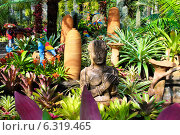 Сад цветов, Таиланд. Стоковое фото, фотограф Павлова Дарья / Фотобанк Лори