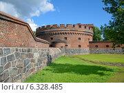 Купить «Музей янтаря. Калининград», фото № 6328485, снято 26 августа 2014 г. (c) Сергей Куров / Фотобанк Лори