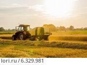 Трактор собирает сено на закате. Стоковое фото, фотограф Артем Федин / Фотобанк Лори