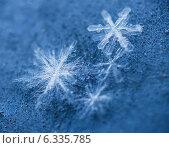 Купить «Снежинки крупно, макро в холодных тонах», фото № 6335785, снято 26 января 2014 г. (c) Горшков Игорь / Фотобанк Лори