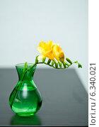 Купить «Желтая фрезия в вазе», фото № 6340021, снято 12 июля 2014 г. (c) Сурикова Ирина / Фотобанк Лори