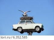 Купить «A nest of white storks on a Trabant, Neuruppin, Germany», фото № 6352585, снято 22 апреля 2004 г. (c) Caro Photoagency / Фотобанк Лори