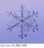 Настоящая снежинка. Стоковое фото, фотограф Unibrom / Фотобанк Лори