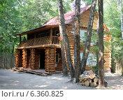 Дом в лесу. Стоковое фото, фотограф Наталья Гуреева / Фотобанк Лори