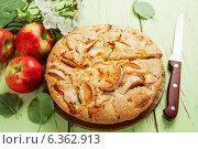 Купить «Домашняя шарлотка, пирог с яблоками», фото № 6362913, снято 3 сентября 2014 г. (c) Надежда Мишкова / Фотобанк Лори