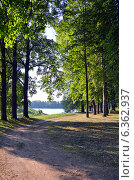 Купить «Углич. Дорога в летнем парке», фото № 6362937, снято 6 августа 2014 г. (c) Александр Замараев / Фотобанк Лори
