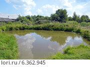 Купить «Маленький деревенский пруд», фото № 6362945, снято 7 августа 2014 г. (c) Александр Замараев / Фотобанк Лори