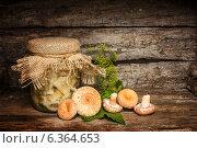 Соленые грибочки. Стоковое фото, фотограф Наталья Осипова / Фотобанк Лори