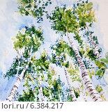 Купить «Березы. Фотография акварельного рисунка», иллюстрация № 6384217 (c) Emmerdeur / Фотобанк Лори