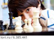 Купить «Мыльчик и шахматы», фото № 6385441, снято 29 августа 2014 г. (c) Astroid / Фотобанк Лори