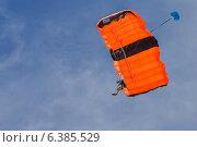 Прыжок с парашютом (2013 год). Редакционное фото, фотограф Анастасия Улитко / Фотобанк Лори