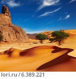 Купить «Sand dunes and rocks, Sahara Desert, Algeria», фото № 6389221, снято 21 августа 2018 г. (c) Ingram Publishing / Фотобанк Лори
