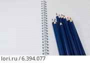 Синие карандаши на раскрытой тетради в клеточку. Стоковое фото, фотограф Иван Корчагин / Фотобанк Лори