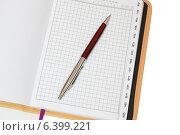 Купить «Телефонная книжка в открытом виде с ручкой», фото № 6399221, снято 11 сентября 2014 г. (c) Рамиль Усманов / Фотобанк Лори
