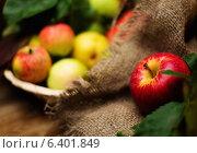 Купить «Apples on a sack clothes», фото № 6401849, снято 11 сентября 2014 г. (c) Andrejs Pidjass / Фотобанк Лори