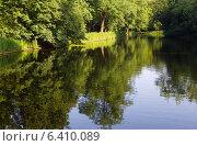 Купить «На берегу озера в парке», фото № 6410089, снято 19 июня 2013 г. (c) Андрей Рыбачук / Фотобанк Лори
