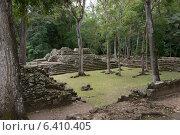 Купить «Ruins at an archaeological site, Copan, Copan Ruinas, Copan Department, Honduras», фото № 6410405, снято 3 января 2013 г. (c) Ingram Publishing / Фотобанк Лори