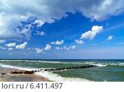 Купить «Берег Балтийского моря», фото № 6411497, снято 20 июля 2013 г. (c) Сергей Трофименко / Фотобанк Лори