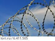Купить «Колючая проволока», фото № 6411505, снято 21 января 2014 г. (c) Сергей Трофименко / Фотобанк Лори