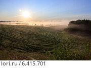 Туманное утро. Стоковое фото, фотограф Антон Каменский / Фотобанк Лори