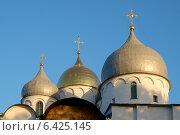 Купола Софийского Собора в Великом Новгороде (2014 год). Стоковое фото, фотограф Антон Каменский / Фотобанк Лори