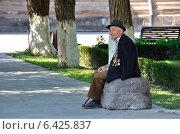 Купить «Ветеран», фото № 6425837, снято 16 сентября 2014 г. (c) Овчинникова Ирина / Фотобанк Лори
