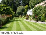 Ботанический сад Левена, бельгия (2005 год). Стоковое фото, фотограф vansant natalia / Фотобанк Лори