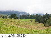 Альпийский пейзаж (2012 год). Стоковое фото, фотограф Анна Дорофеенко / Фотобанк Лори