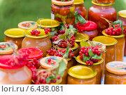 Купить «Банки с домашними заготовками и гроздья калины», фото № 6438081, снято 1 сентября 2014 г. (c) Володина Ольга / Фотобанк Лори