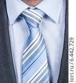 Купить «Businessman's Striped Necktie», фото № 6442729, снято 25 марта 2014 г. (c) Андрей Попов / Фотобанк Лори