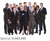 Купить «Lineup of business executives or partners», фото № 6443945, снято 12 августа 2012 г. (c) Андрей Попов / Фотобанк Лори