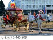 Карета (2014 год). Редакционное фото, фотограф СергейДорогов / Фотобанк Лори