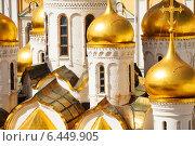 Купить «Крупным планом купола Благовещенского собора в Московском Кремле», фото № 6449905, снято 3 июня 2014 г. (c) Сергей Новиков / Фотобанк Лори