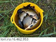 Рыбалка. Стоковое фото, фотограф Александр Бураков / Фотобанк Лори