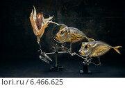 """Купить «Натюрморт """"Вомер и цветная кукуруза"""". Стилизация под старину», фото № 6466625, снято 23 августа 2014 г. (c) V.Ivantsov / Фотобанк Лори"""