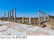 Руины гимназиума в древнем городе Саламис (2014 год). Стоковое фото, фотограф Катерина Вахе / Фотобанк Лори