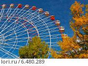 Купить «Колесо обозрения», фото № 6480289, снято 2 октября 2014 г. (c) Наталья Волкова / Фотобанк Лори