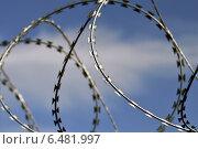 Купить «Колючая проволока», фото № 6481997, снято 21 января 2014 г. (c) Сергей Трофименко / Фотобанк Лори