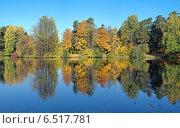 Купить «Симметричный осенний пейзаж с деревьями, отражающимися в воде», фото № 6517781, снято 2 октября 2014 г. (c) Михаил Марковский / Фотобанк Лори